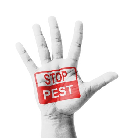 home pest control services